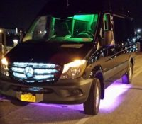 Alpha Luxury Sprinter Limo.